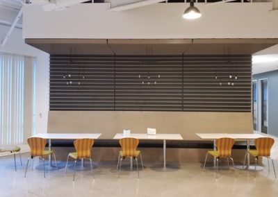 Grille Wall and Ceilings at Avanir Pharmaceuticals